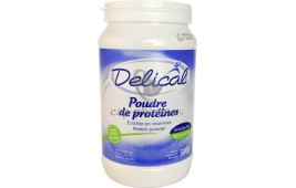 DELICAL PDR PROTEIN POT 500G T